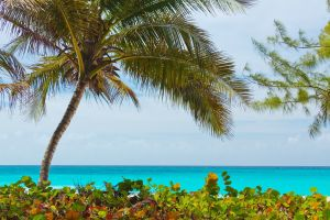 beach-84559_1920